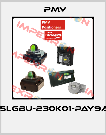 Pmv-(IPP5LGBU-230K01-PAY9A-3Z  price