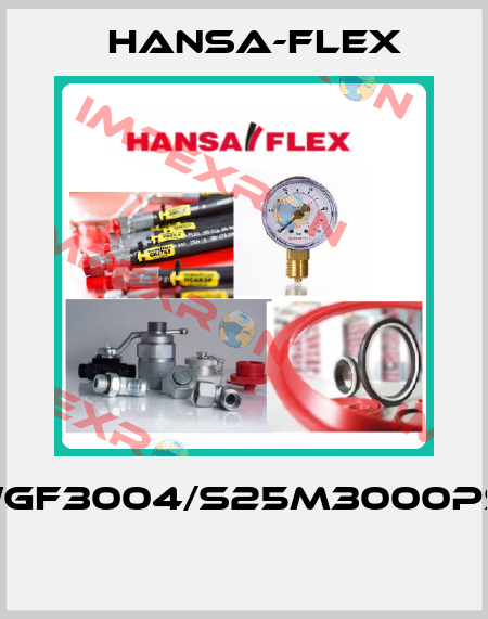 HANSA-FLEX-(WGF3004/S25M3000PSI)  price